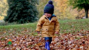 Fun fall activities for families in Kenosha
